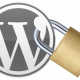 WordPress Security and WP Scan